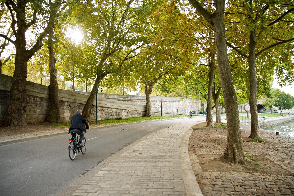 Rives de Seine