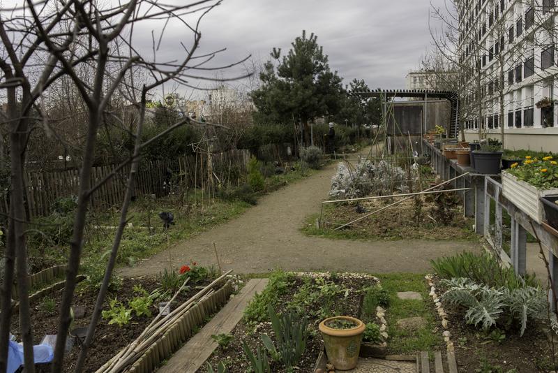 Jardin partagé Anna Marly (14e)