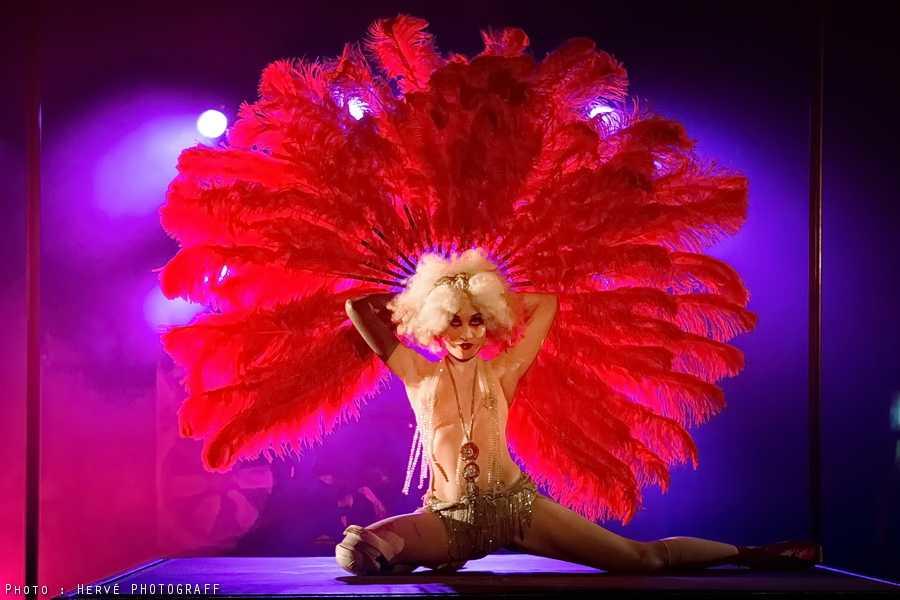Steam une autre vision du cirque que faire paris - Le cirque electrique porte des lilas ...