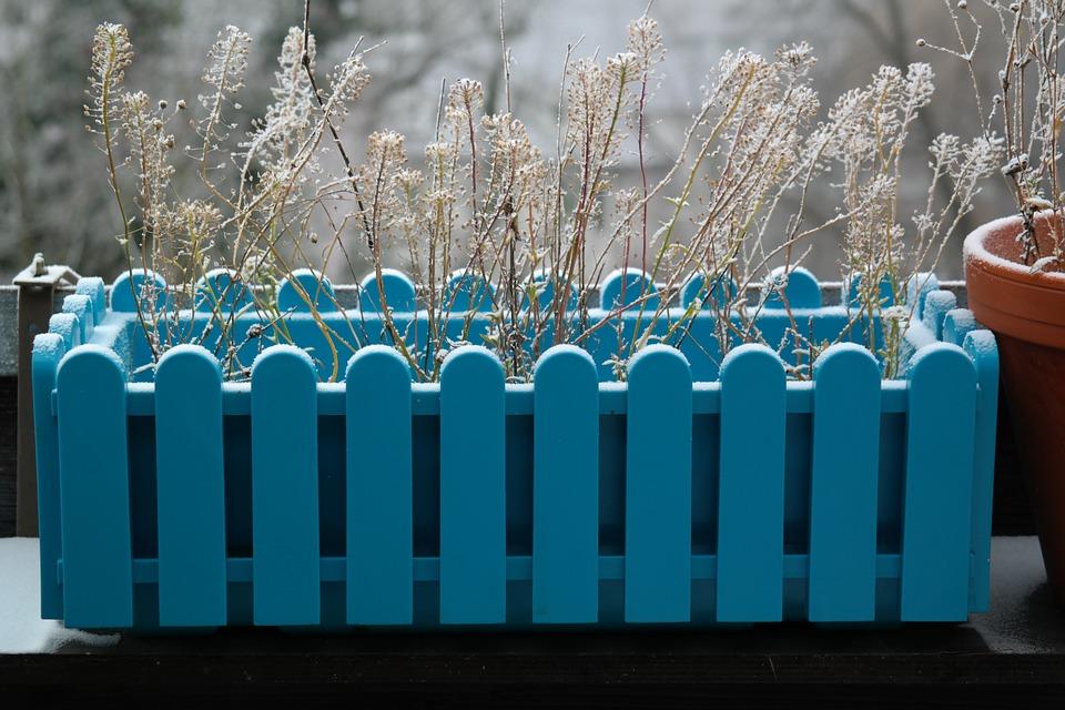 Protéger vos plantes sur balcon l'hiver