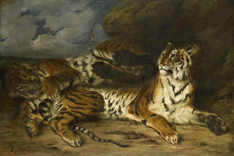 Jeune tigre jouant avec sa mère