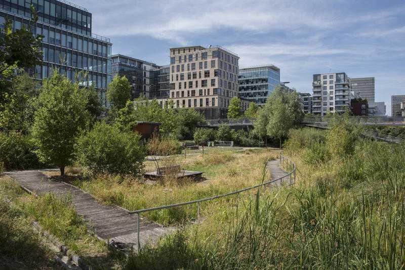 Le jardin des Grands-Moulins-Abbé-Pierre