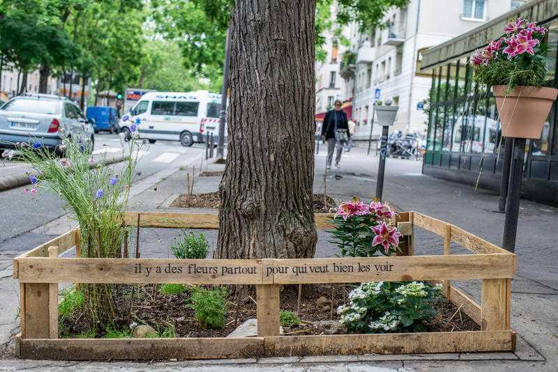 Permis de végétaliser, boulevard de Charonne, Paris 20e