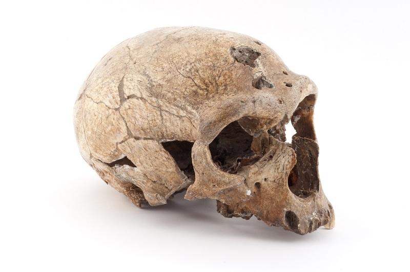 L'Homme de La Chapelle-aux-Saints, paléolithique moyen, France _b_