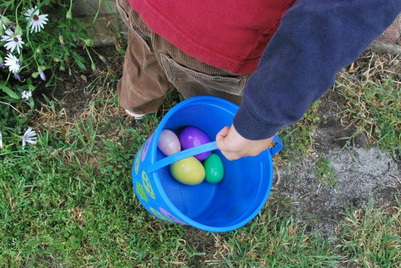 Eggs hunt