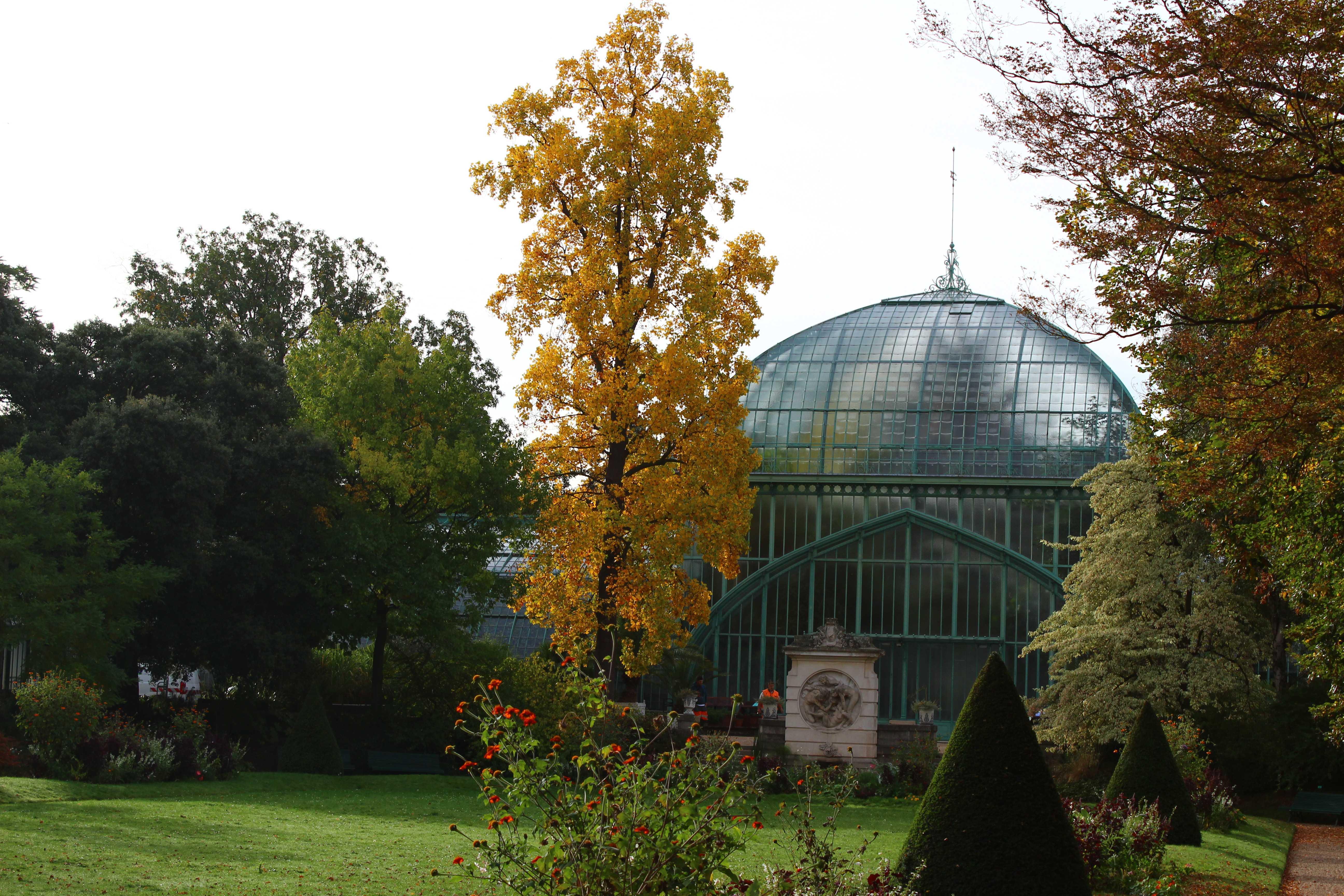 Visite du jardin des serres d auteuil que faire paris for Jardin botanique paris