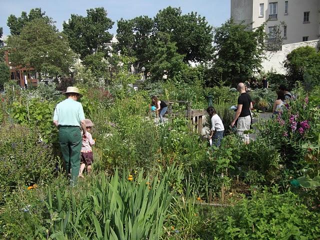 vue du jardin et des jardiniers