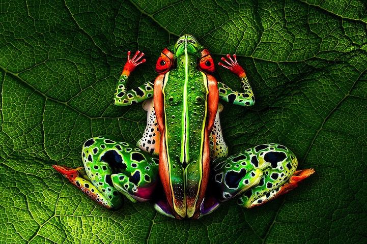 peinture d'une grenouille