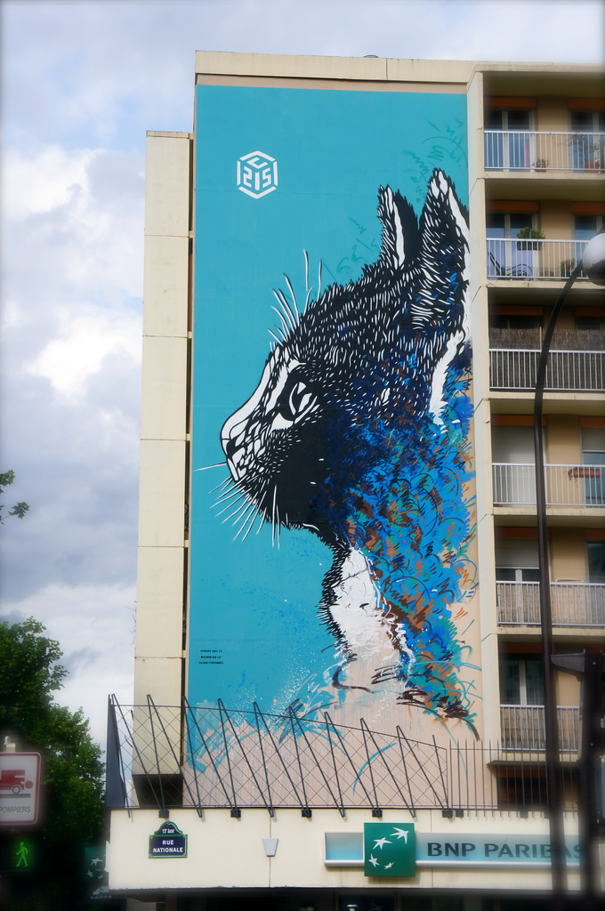 C215 fresque paris 13