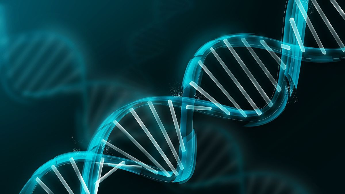 Peut-on manipuler le génome humain ? |