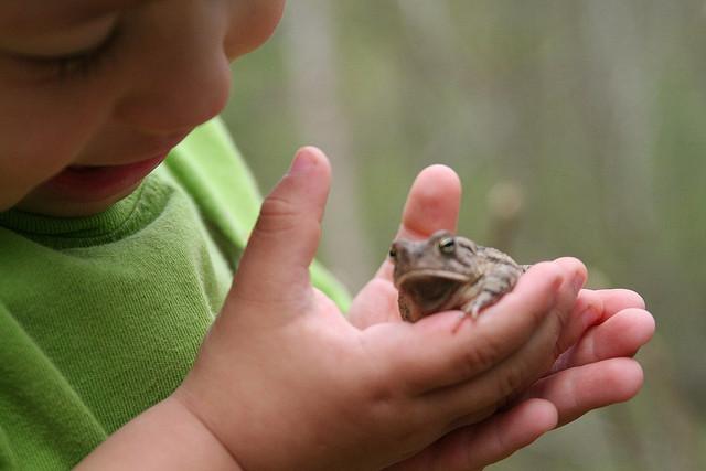 enfant avec grenouille