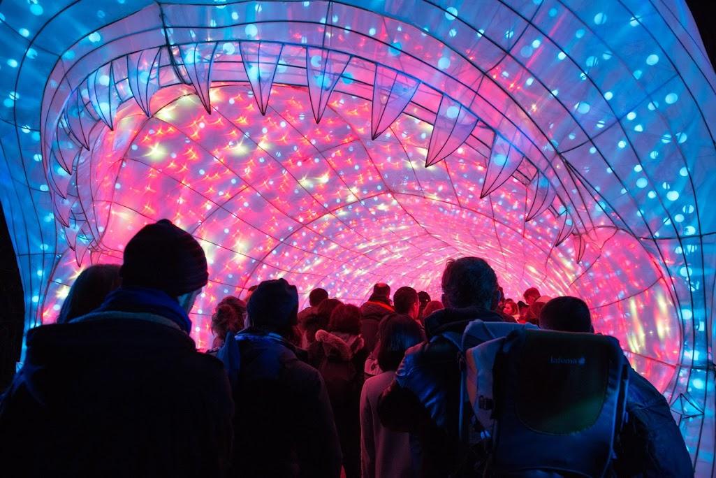 Animaux illuminés au Jardin des Plantes