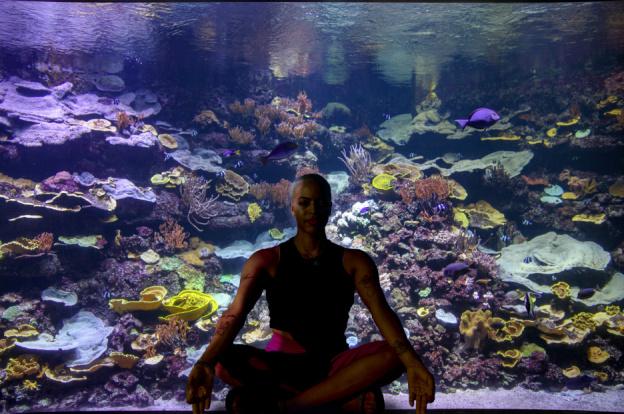 Yogaquarium à l'aquarium de paris