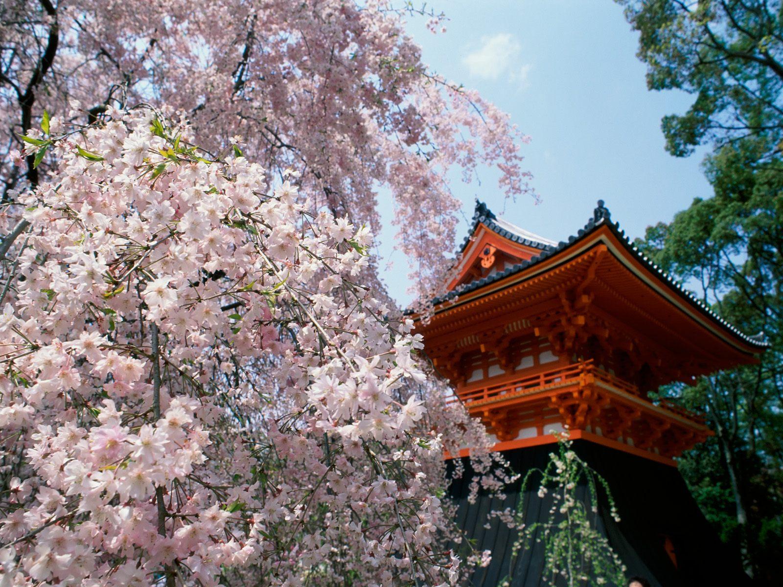 Japonisme et autres détours asiatiques