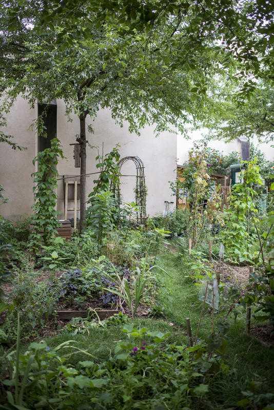 Jardin partagé de l'association des 1001 feuilles au Jardin Anne-