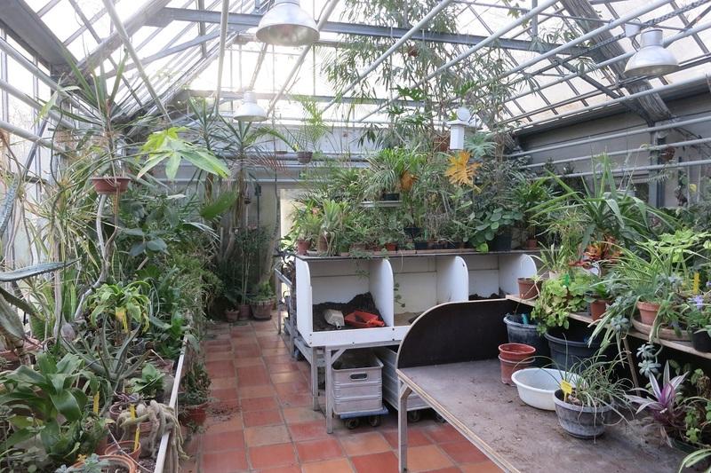 La serre de la Maison du Jardinage