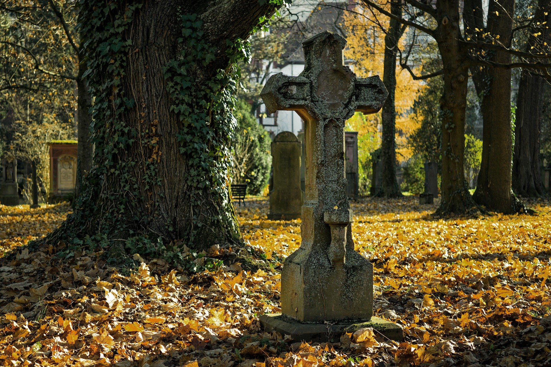 Père Lachaise : Rites, mystères et guérisons