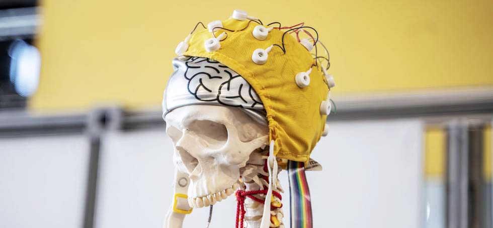 Semaine du cerveau en direct de la Cité des sciences - Que faire à Paris