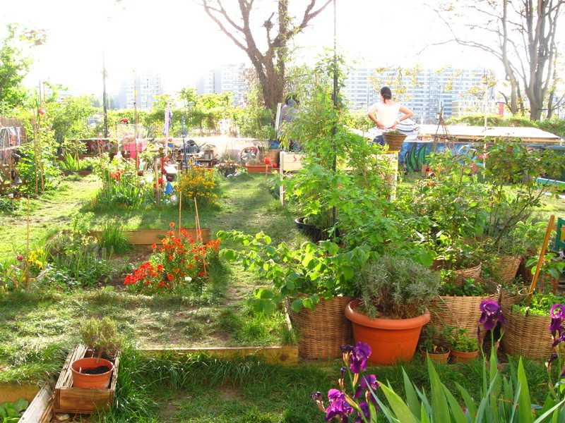 Jardin participatif Ecobox