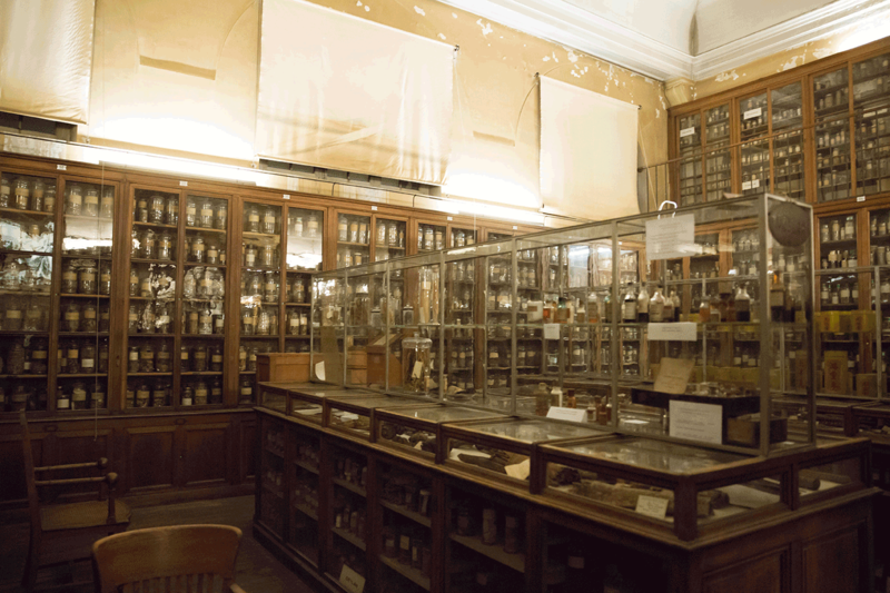 Le musée François Tillequin