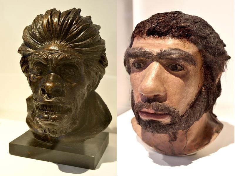 Expo Néandertal - à droite, reconstitution du visage de l'Homme de Néandertal, Norberto Montecucco, vers 1908 (Musée d'Anthropologie criminelle) et à gauche, reconstitution récente